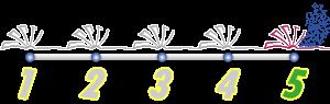 valoracion5